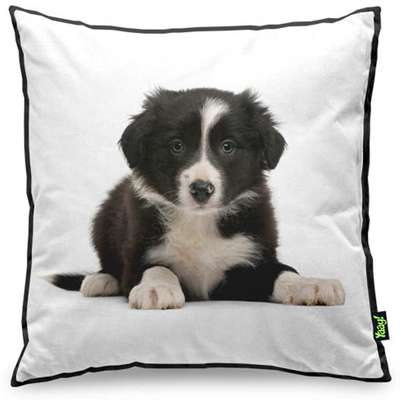 Almofada Yaay Love Dogs Black Edition - Border Collie