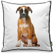 Almofada Yaay Love Dogs Black Edition - Boxer