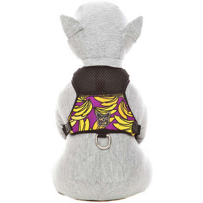 Peitoral Dog Club Banana Roxa Neoprene